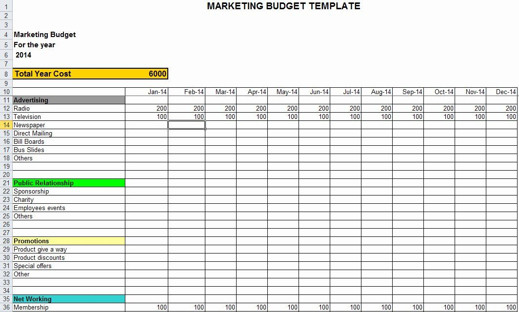 Marketing Plan Budget Template Beautiful Marketing Bud