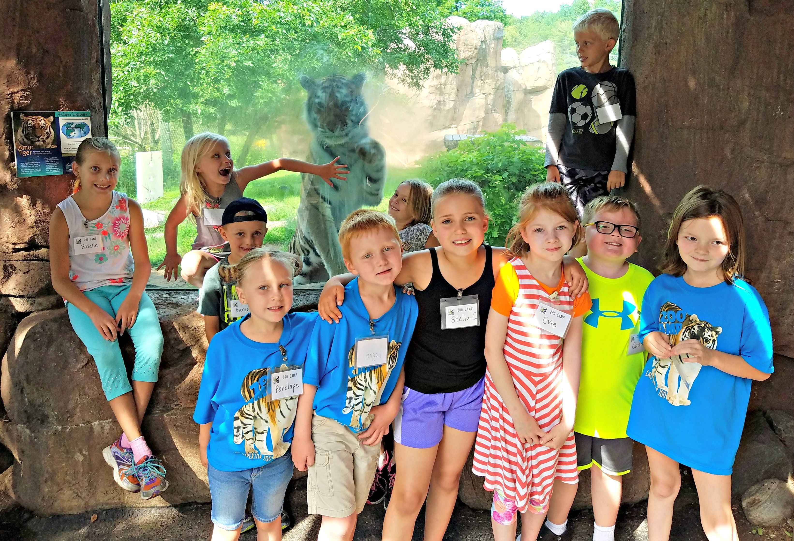 Summer Zoo Camps