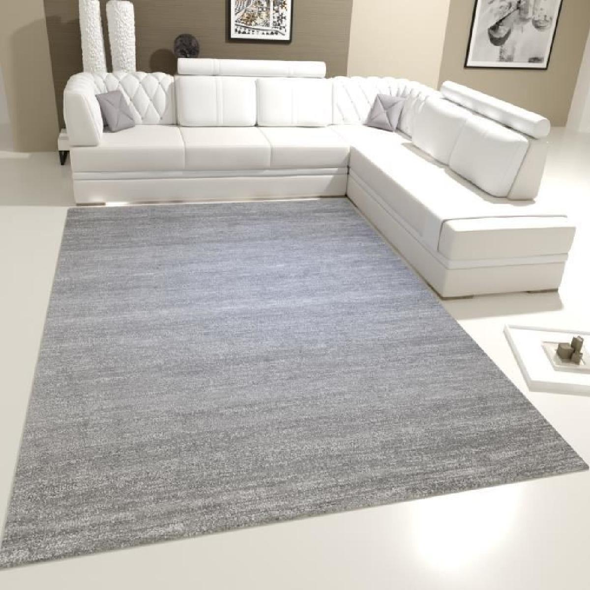 impressionnant tapis poil ras gris
