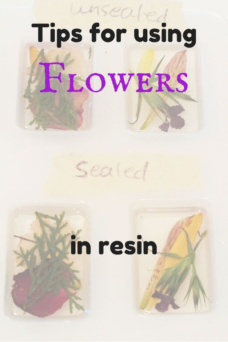 Photo of drying flowers Archives – Resin Obsession