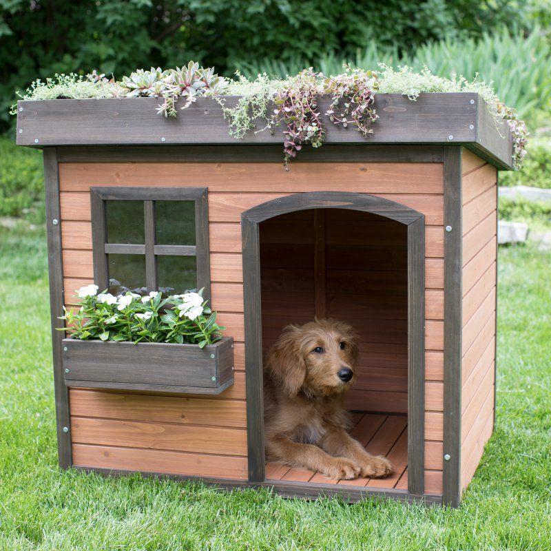 Boomer & Lucky Green Roof Dog House ROC 161103B