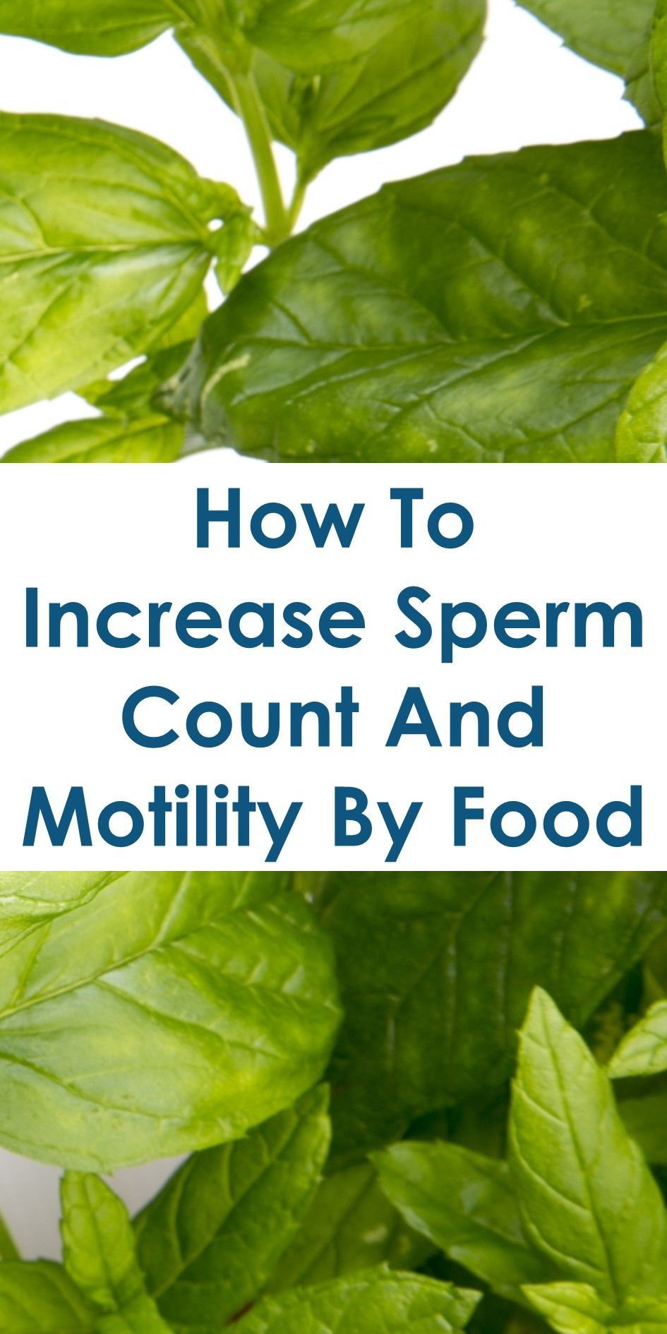 increase sperm count naturally home remedies
