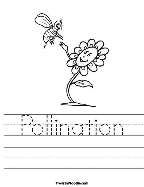 Pollination Worksheet Pollination Worksheet Pollination Bee And Flower