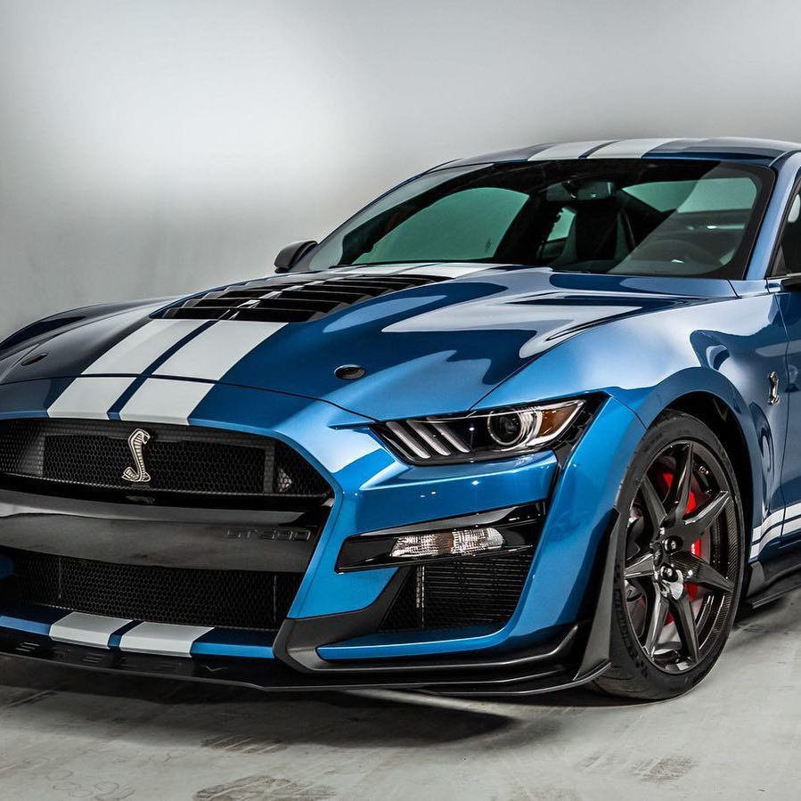 Im So Exited For The New Gt500 Ford Mustang Gt Gt500 New
