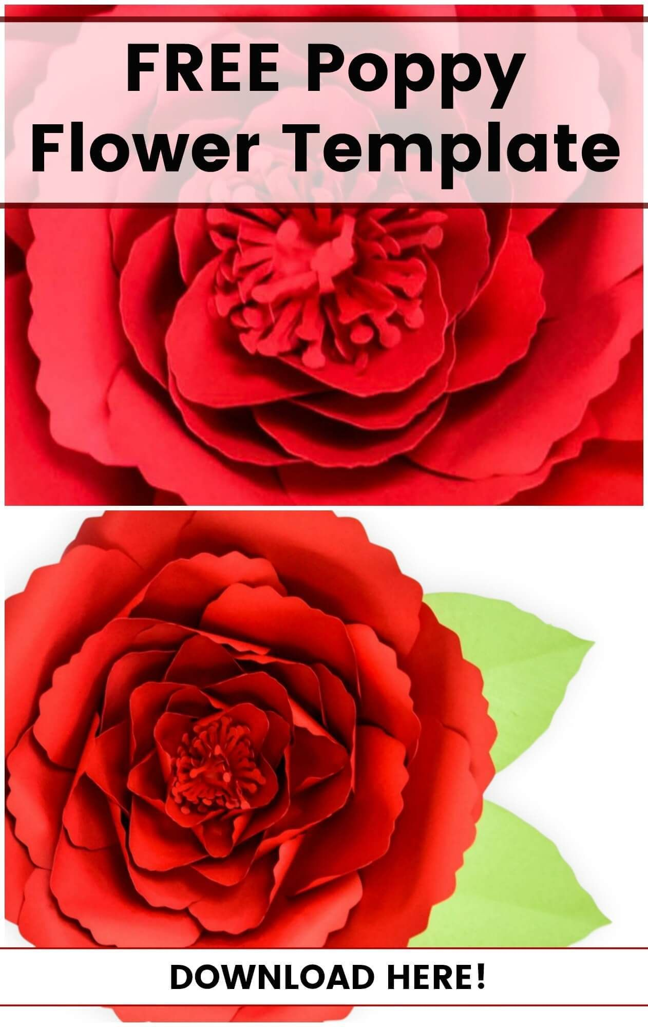 Free Paper Flower Templates How to Make Giant Poppy Paper