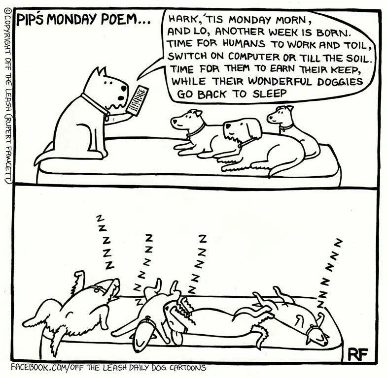 Pip's Monday poem...Off the Leash