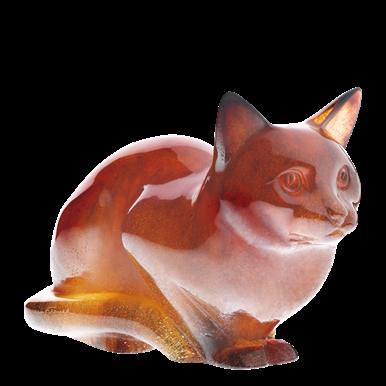 Cat amber crystal