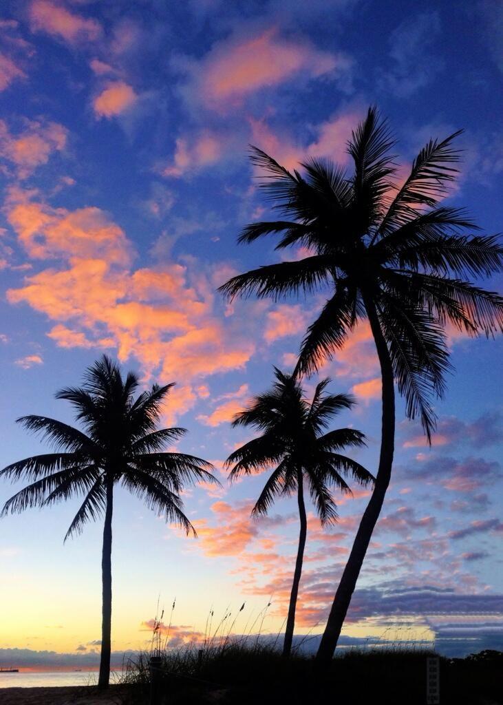 Fort Lauderdale skies, Florida.
