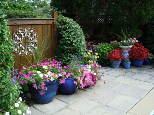 Tips To Arrange A Flower Garden And How To Do It. Plants In PotsPatio ...