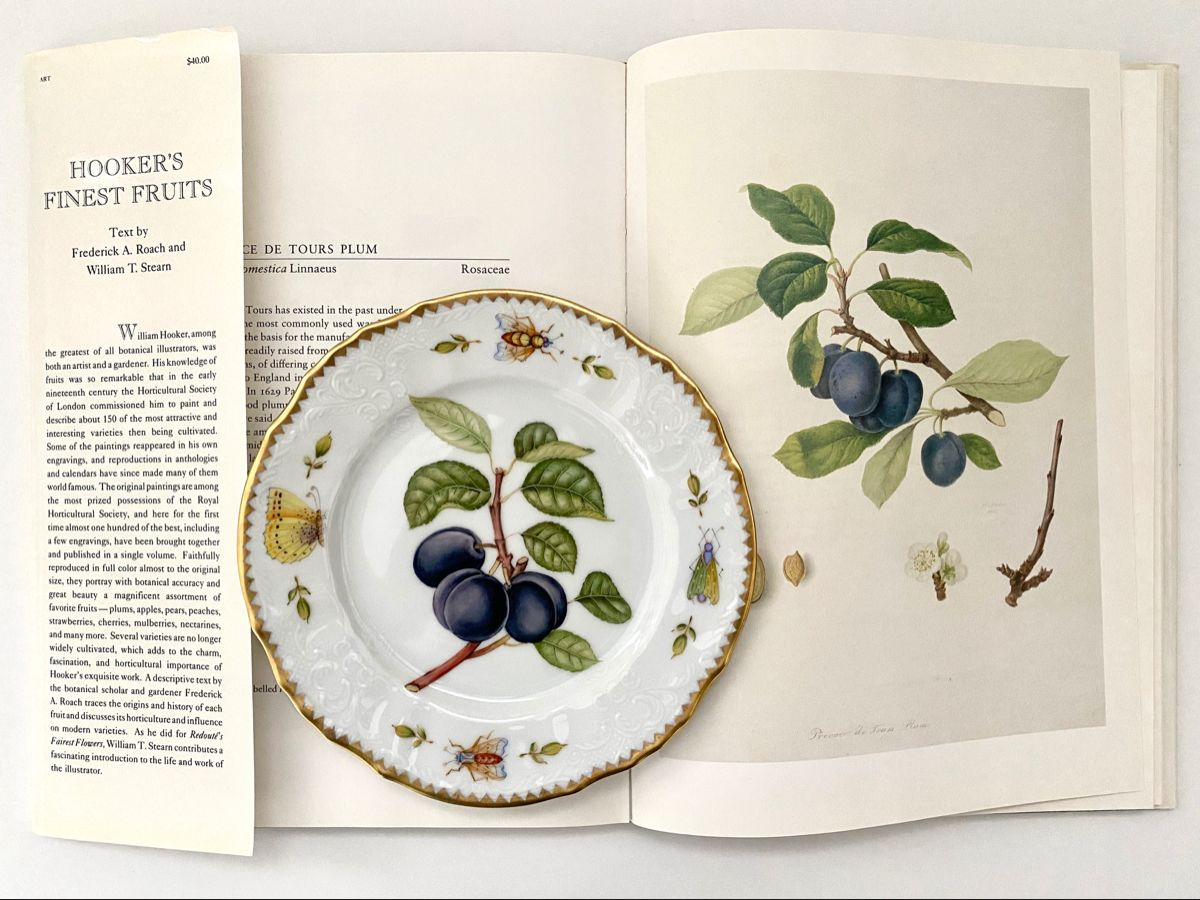 Beautifully hand painted porcelain plate. The design is inspired by the 19th century botanical artist. John Hooker's work. The entire fruit collection is available on my website www.annaweatherley.com. #annaweatherley #porcelain #handpainted #botanicalart #dinnerparty #dinner #tablesetting #tablescapes #tabledecor #diningroomdecor #diningtabledecor #homedecor