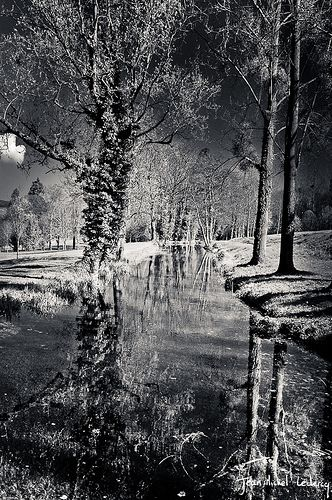 10 great samples of reflections in B - The Photography Blog