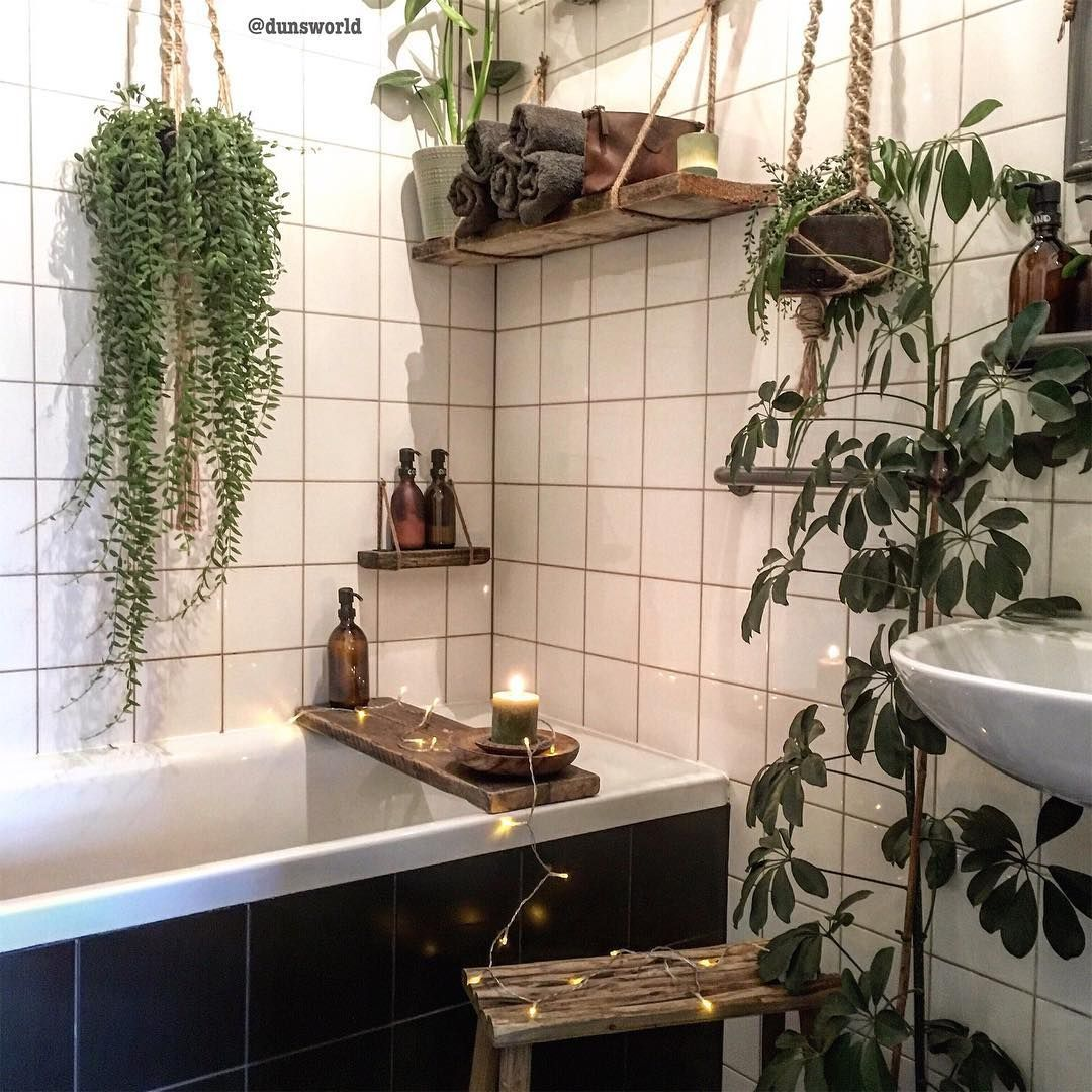 Image May Contain Plant And Indoor Small Bathroom Decor Room With Plants Zen Bathroom