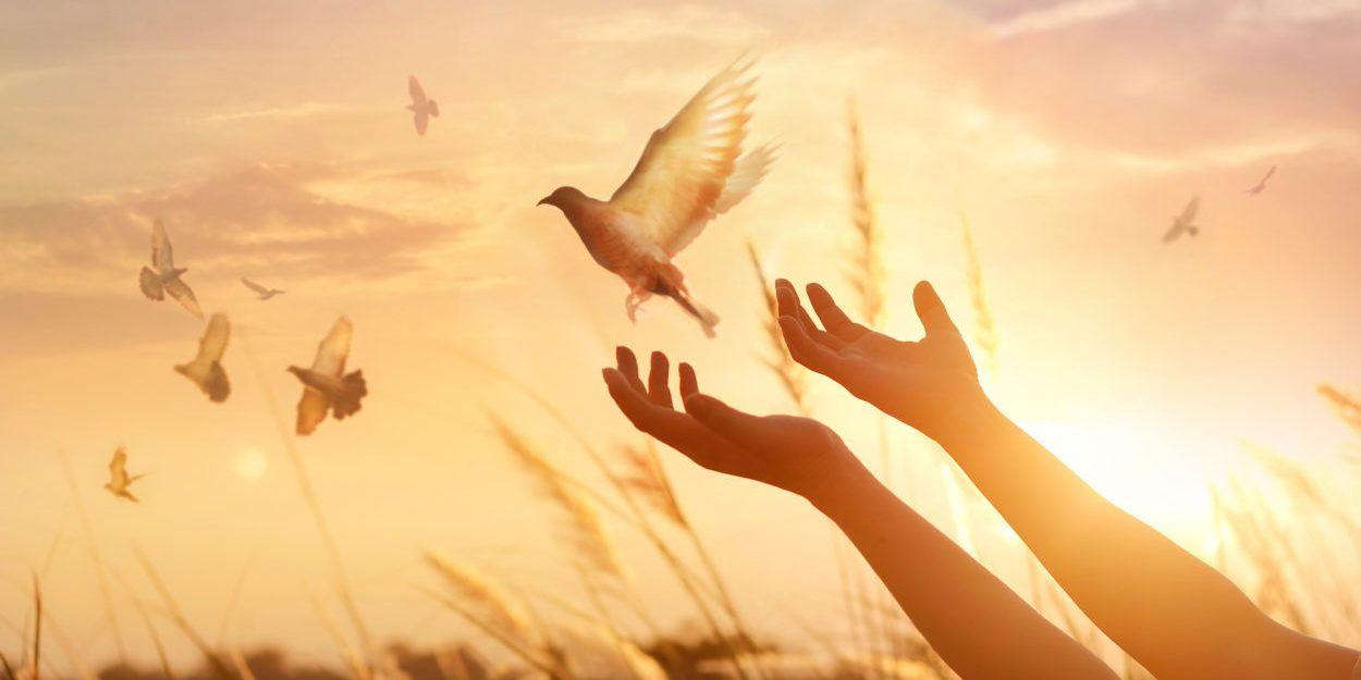 Il est avantageux qu'un seul homme meure pour le peuple » (Jean 18:14). On  dit souvent que … | Faire la paix, Programmation neuro linguistique, Neuro  linguistique
