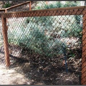 Attaching Chain Link Fence To Wooden Posts Google Search Chain Link Fence Backyard Diy Backyard