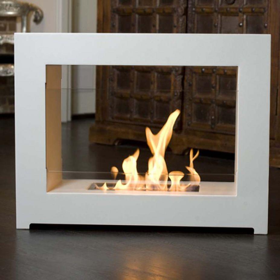 Indoor Outdoor Fireplace dactus