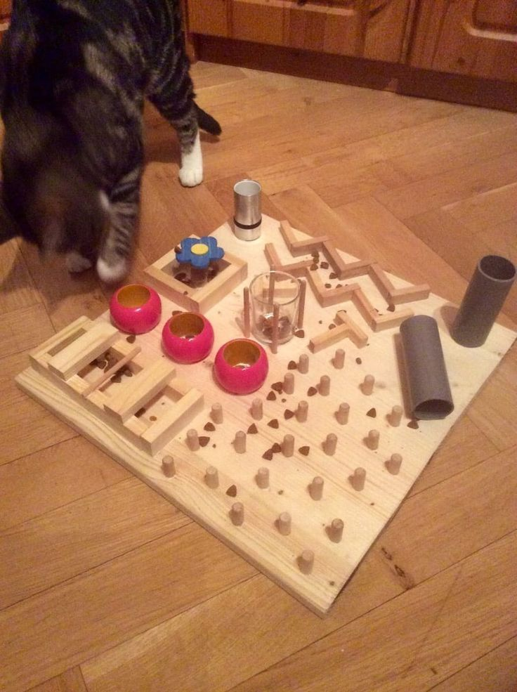 DIY kitty play board Cat toys, Cat diy, Cat puzzle