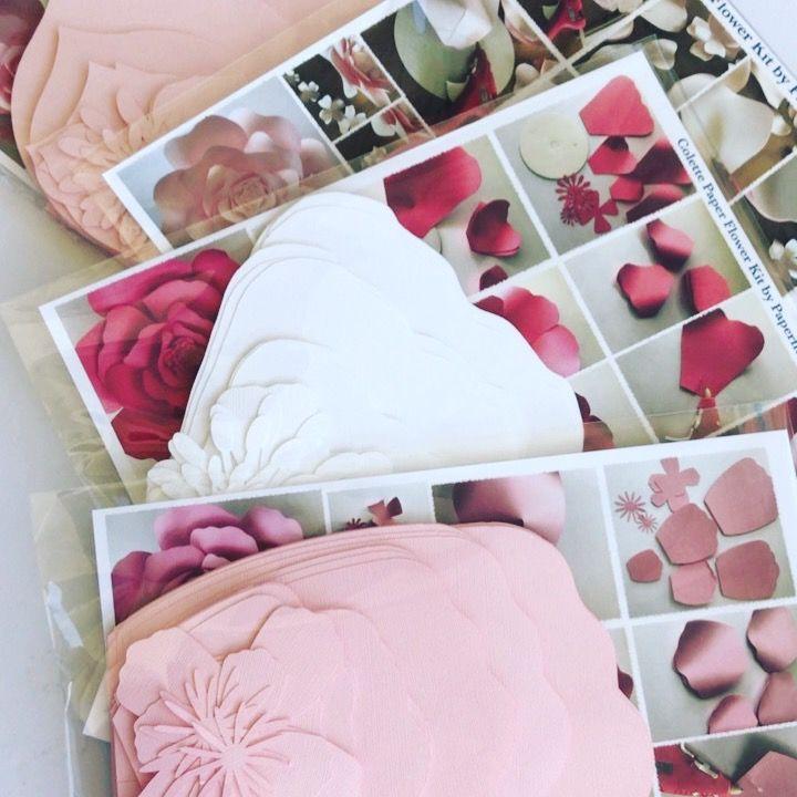 Paper flower kiy kits by paperflora paperflora shades of pink paper flower kiy kits by paperflora paperflora shades of pink pinterest flower manualidades and craft mightylinksfo