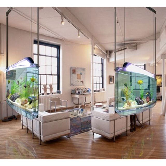 fish tank walls to enclose the living room cray fasho | for the