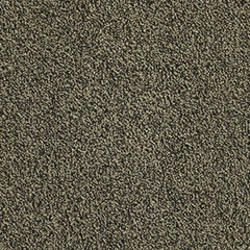 Orion Treasure Commercial Carpet Tiles 24 Commercial Carpet Commercial Carpet Tiles Carpet Tiles