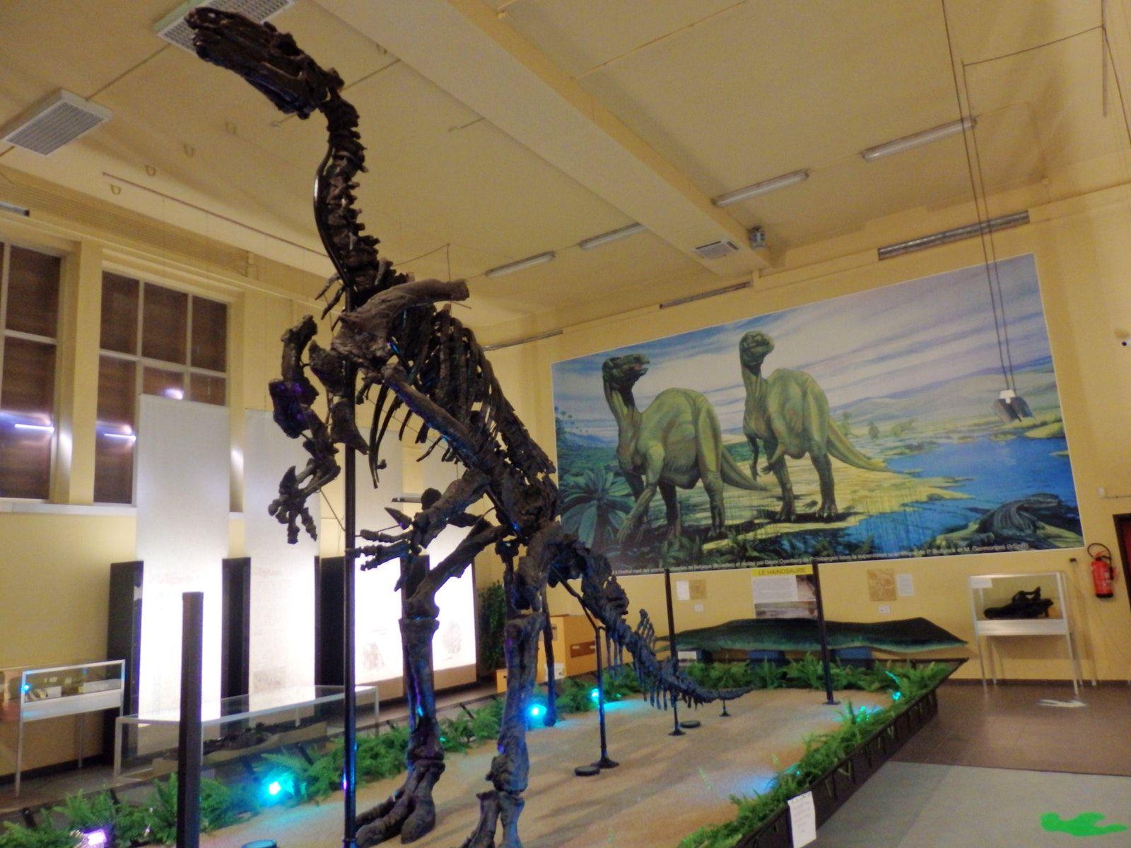 Visit Musée De L Iguanodon à Bernissart Dinosaur History Paleontology Museum