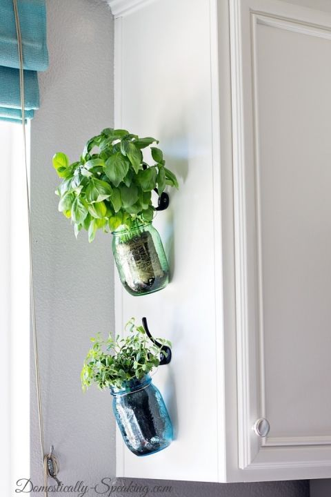 Hanging Fresh Herbs In Vintage Blue And Green Mason Jars Herb