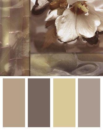 Zen Elements III Color Palette  Color Palettes  Zen