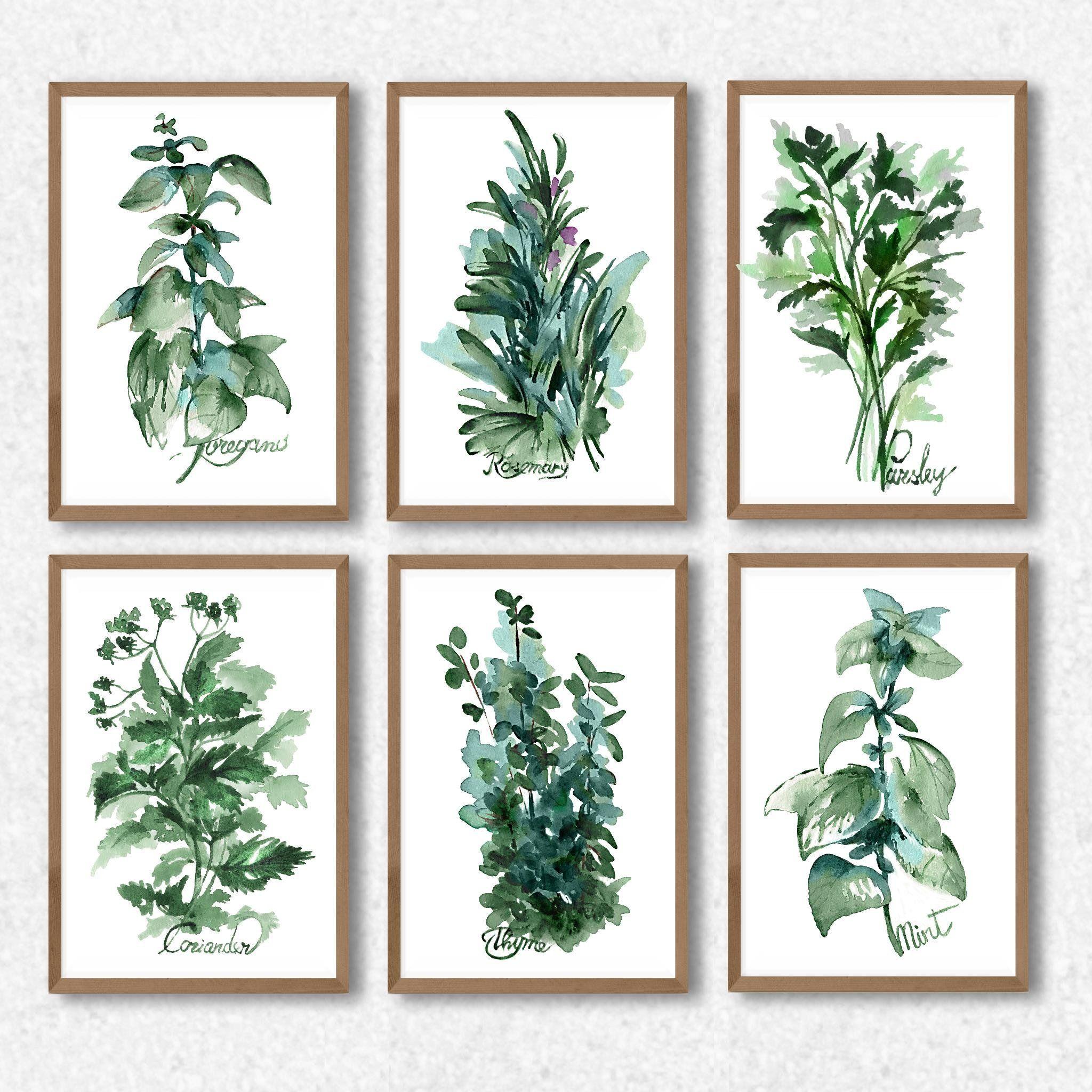 Herbs Prints Set Of 6 Farmhouse Decor Kithen Wall Decor