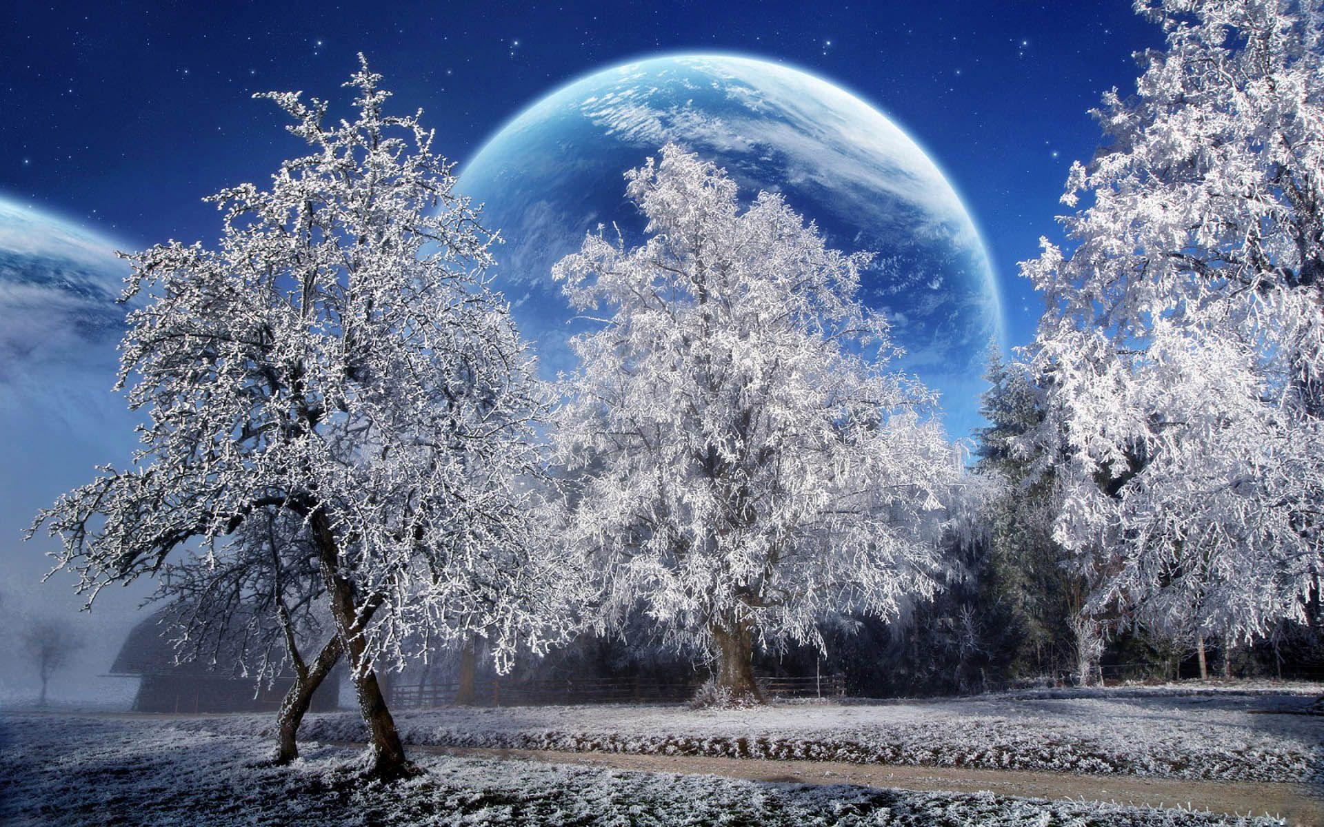 Pretty Winter Pictures Winter Scenery Winter Wallpaper Hd
