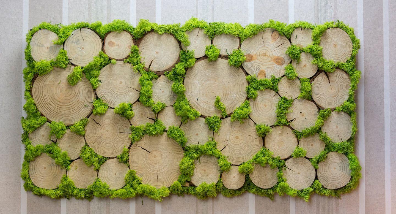 Mech Chrobotek Naturalny Obraz Z Mchu Zawsze Zywy 7701266423 Allegro Pl Moss Decor Garden Wall Designs Moss Wall Art