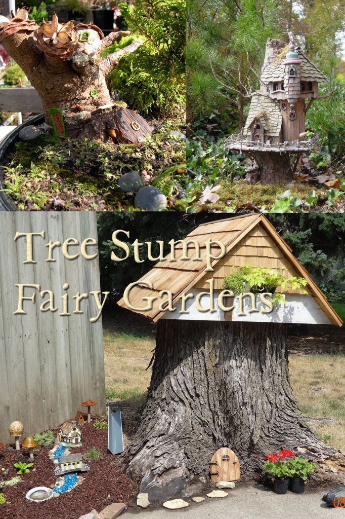 Gnome Tree Stump Home: The Perfect Backyard Fairy Garden Usually Starts With A
