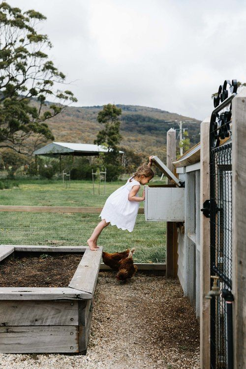 Gardens — Marnie Hawson