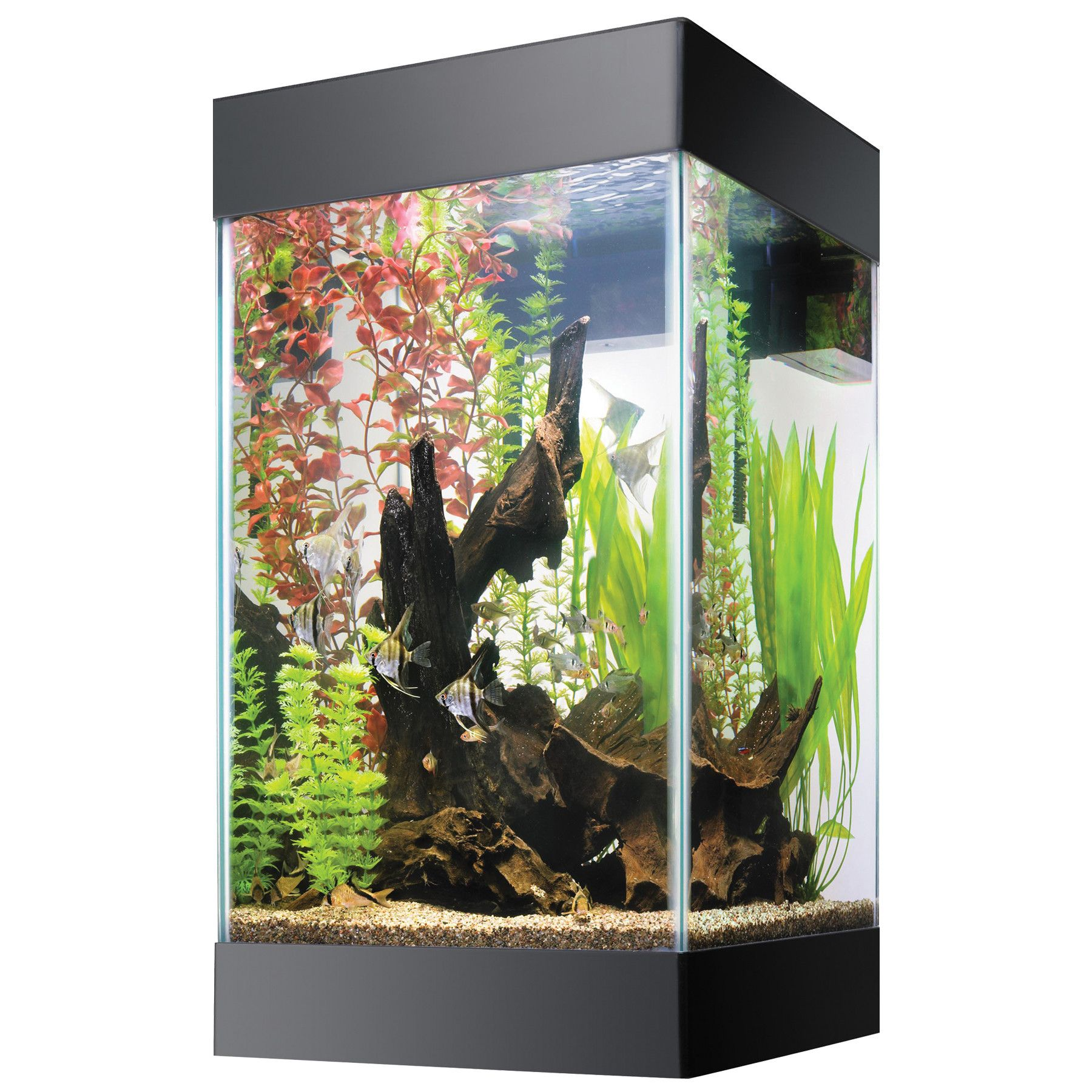 Aquarium fish tank for sale - Tanks