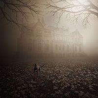 Shades of autumn by Alshain4