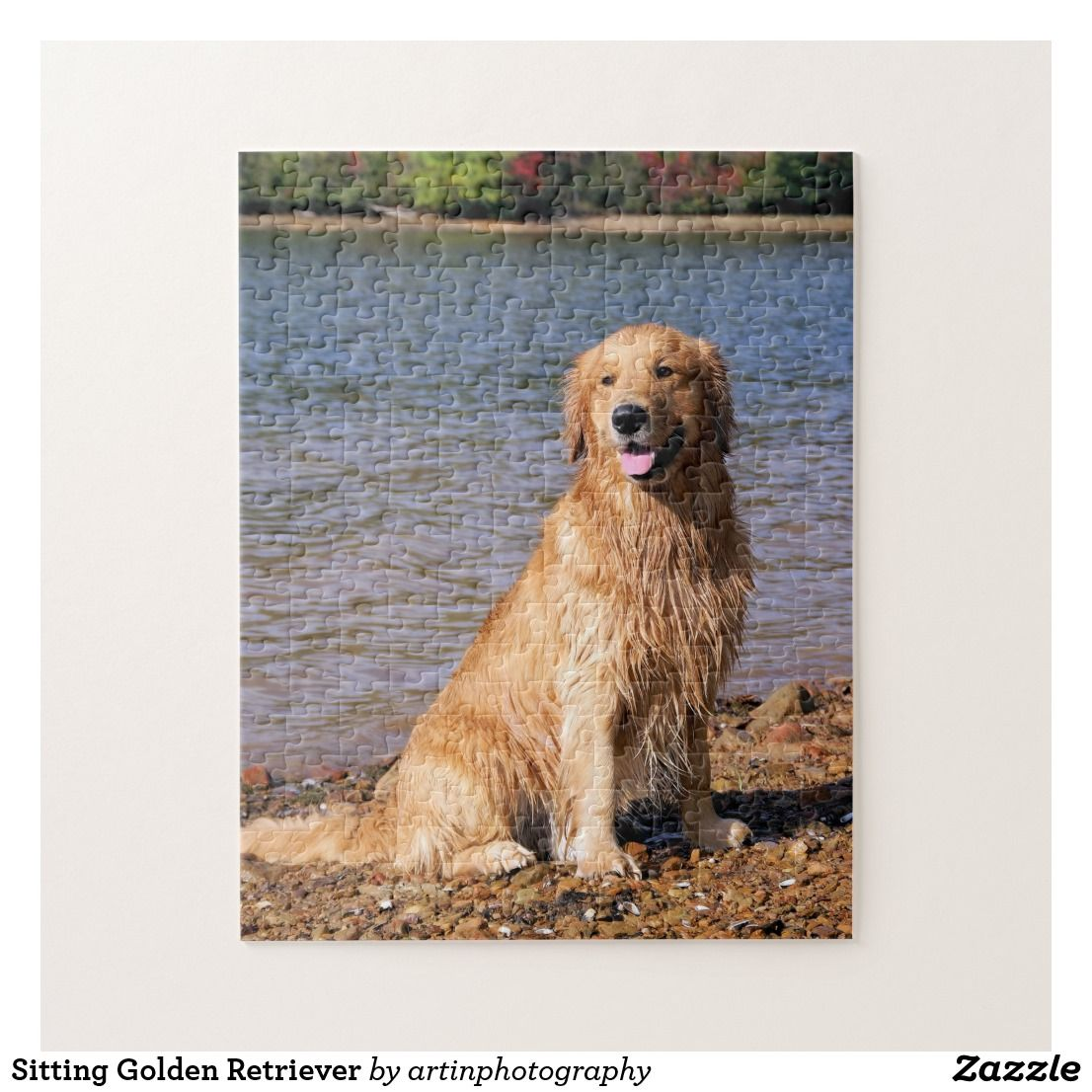 Sitting Golden Retriever Jigsaw Puzzle Zazzle Com With Images Golden Retriever