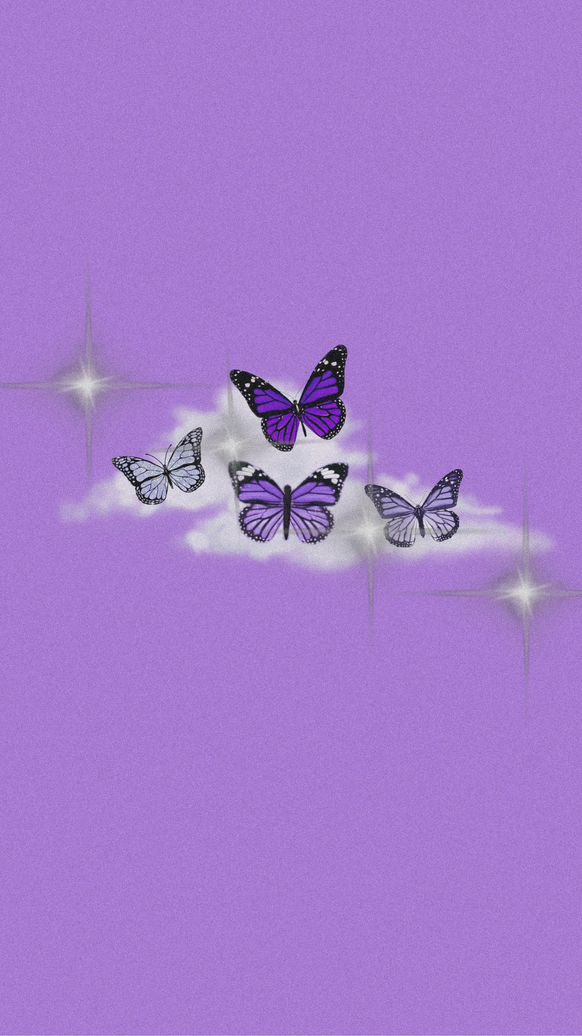 Purple Butterfly Butterfly Wallpaper Aesthetic Iphone Wallpaper Free Iphone Wallpaper
