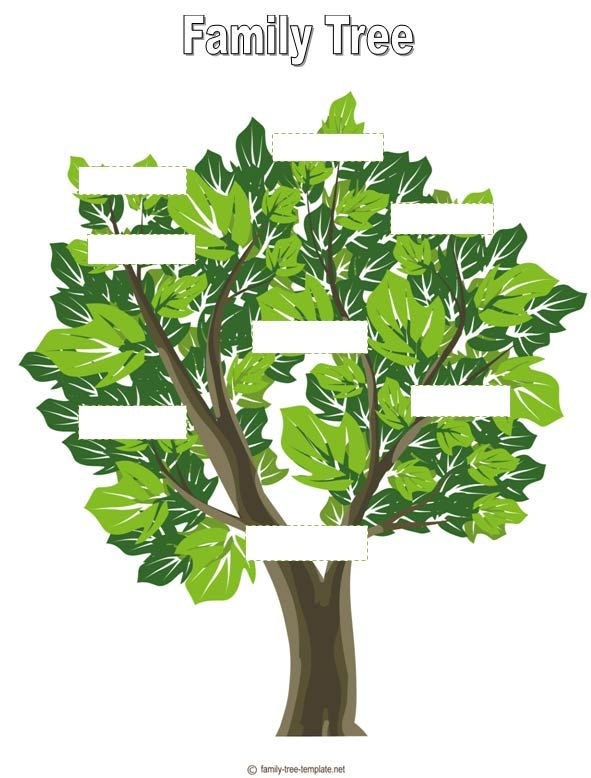 Free Printable Family Tree For Kids