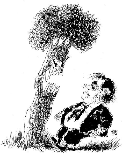 Il Sole e Le Nuvole: La rivolta degli alberi