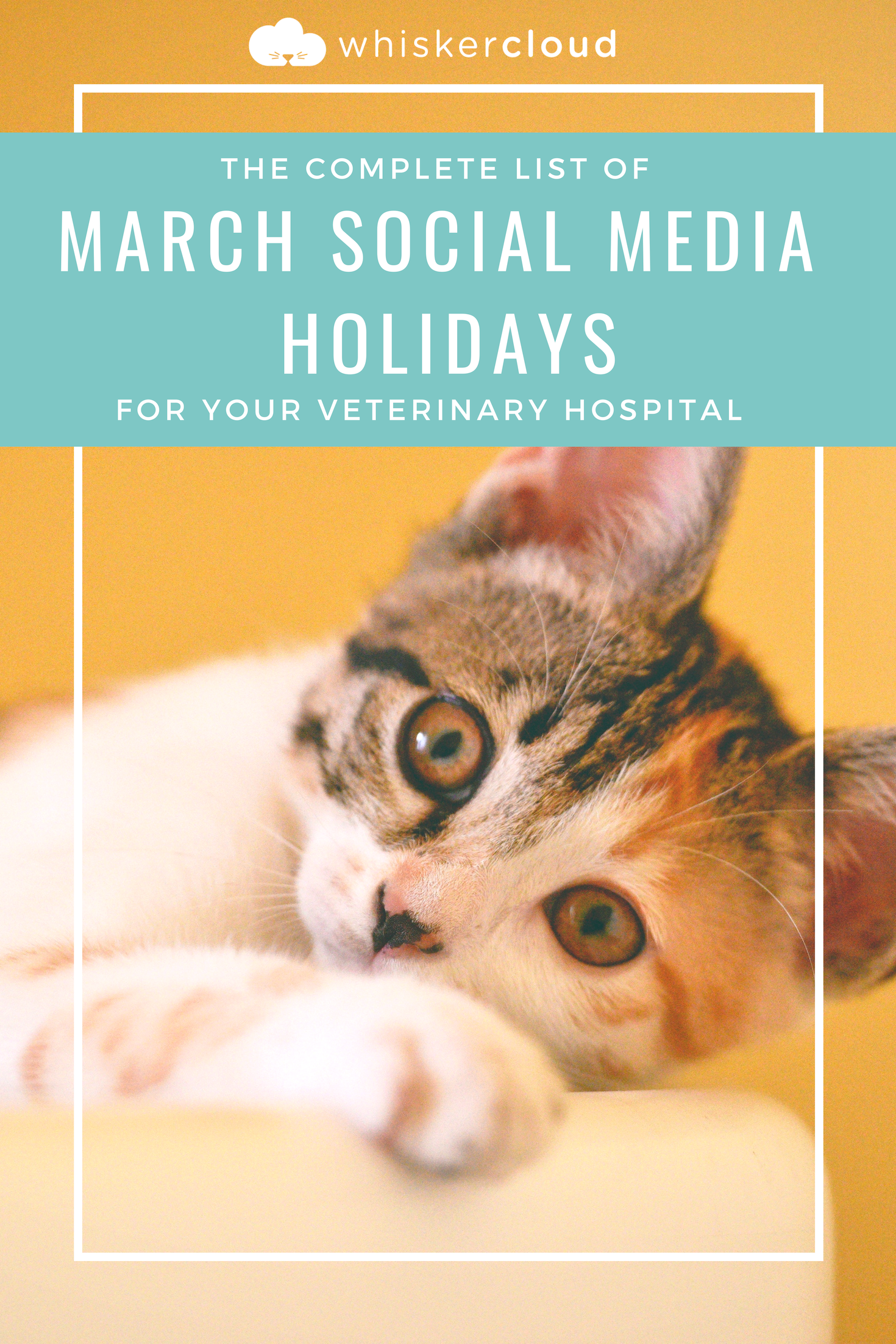 Complete List of Social Media Holidays For Veterinary