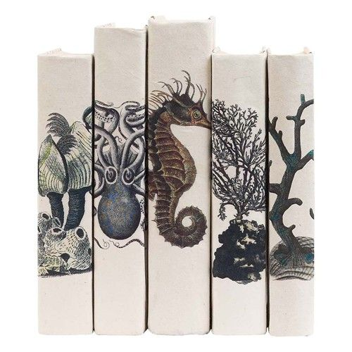 Set Of Five Coastal Curiosities With French Script Hand