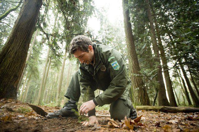 National Park Ranger Resume 27.05.2017