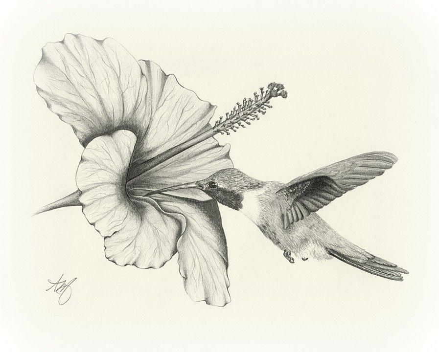 Hummingbird With Hibiscus Sold Tattos Colibri Dibujo Tatuajes