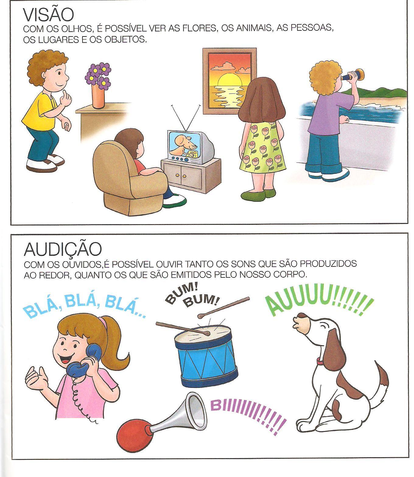 Os Cinco Sentidos Educacao Infantil Com Imagens Educacao