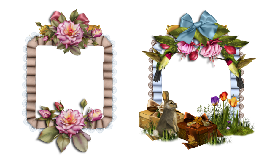 Marcos Gato Marco Png Otoño Marco png Rosas Azules Marcos png Floral ...