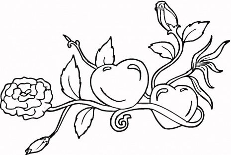 Hearts And Roses Coloring Page Super Coloring Heart Coloring Pages Coloring Pages Flower Coloring Pages
