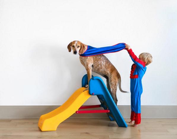 Instagram com fotos de cadela adotada alcança mais de 1 milhão de seguidores