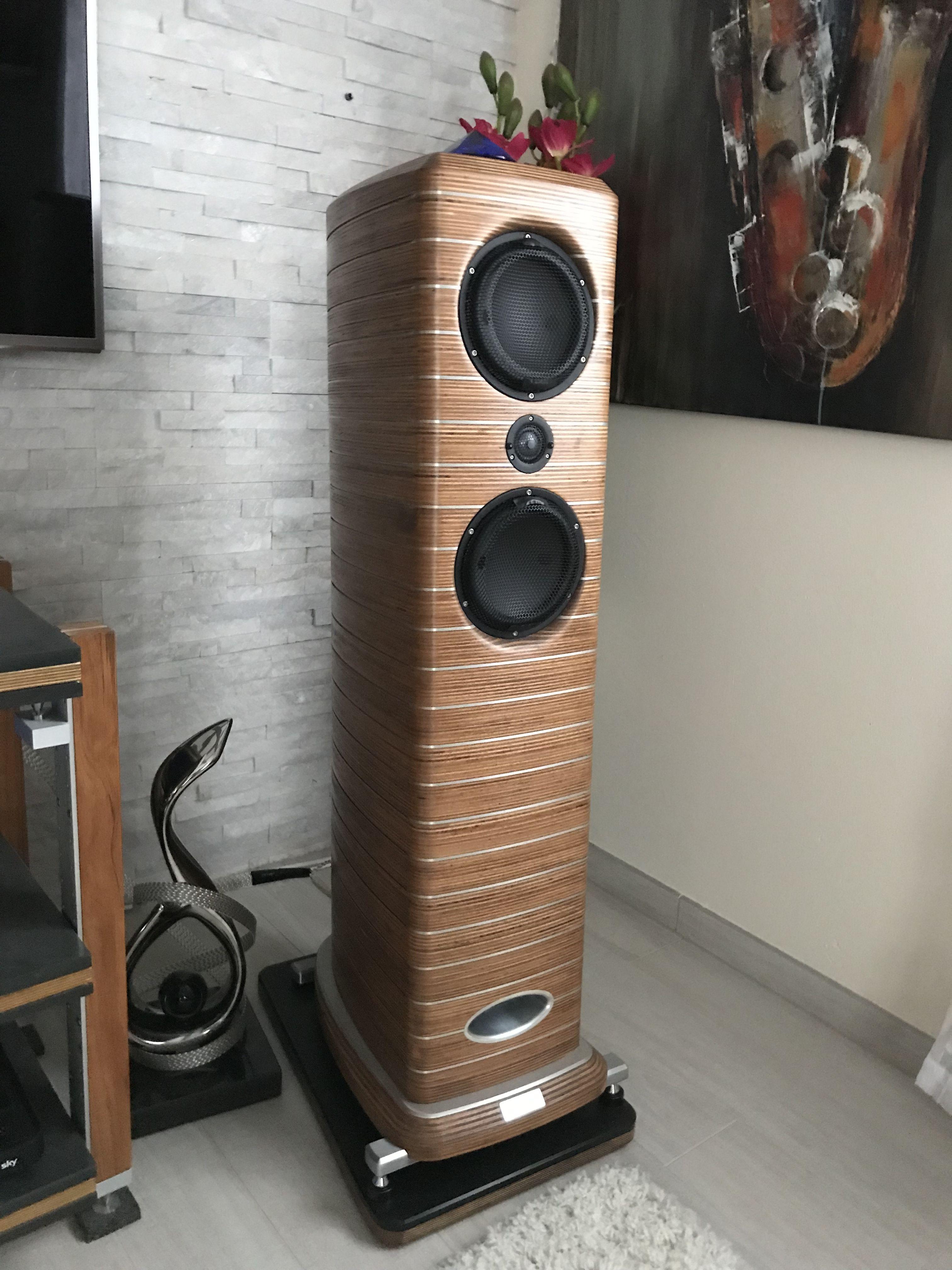 Lautsprecher Bauen