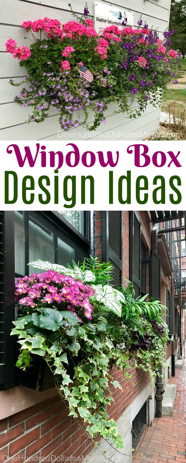 Beautiful Window Box Design Ideas from the Northeast | Gardening ...