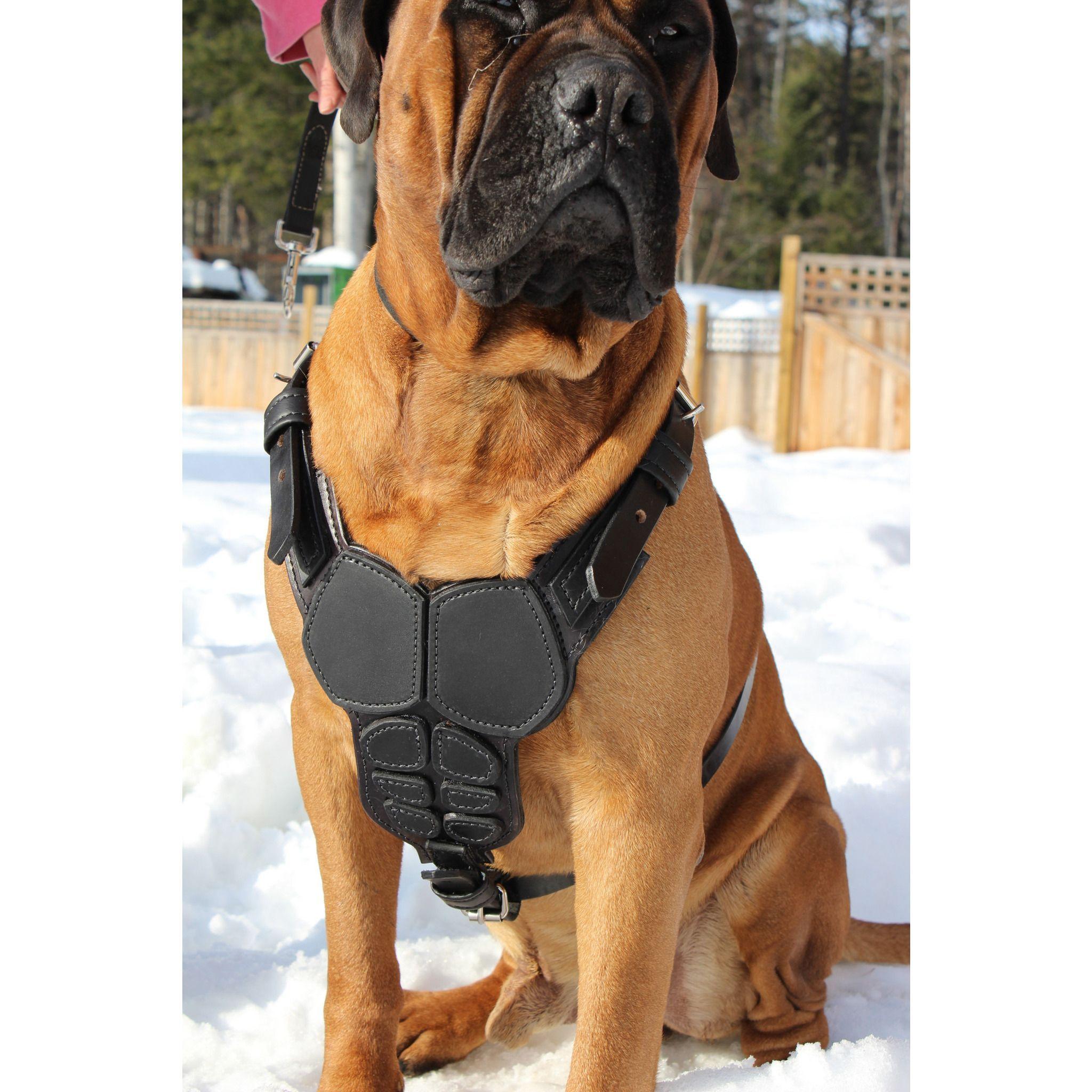 Body Armor Harness Dog Armor Body Armor Dog Harness