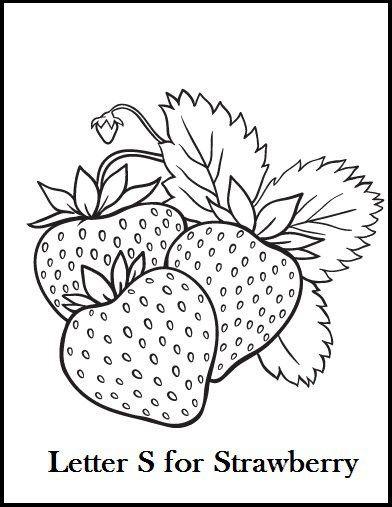 The Best Chosen Illustrations Of Strawberry Pola Sulam Buku
