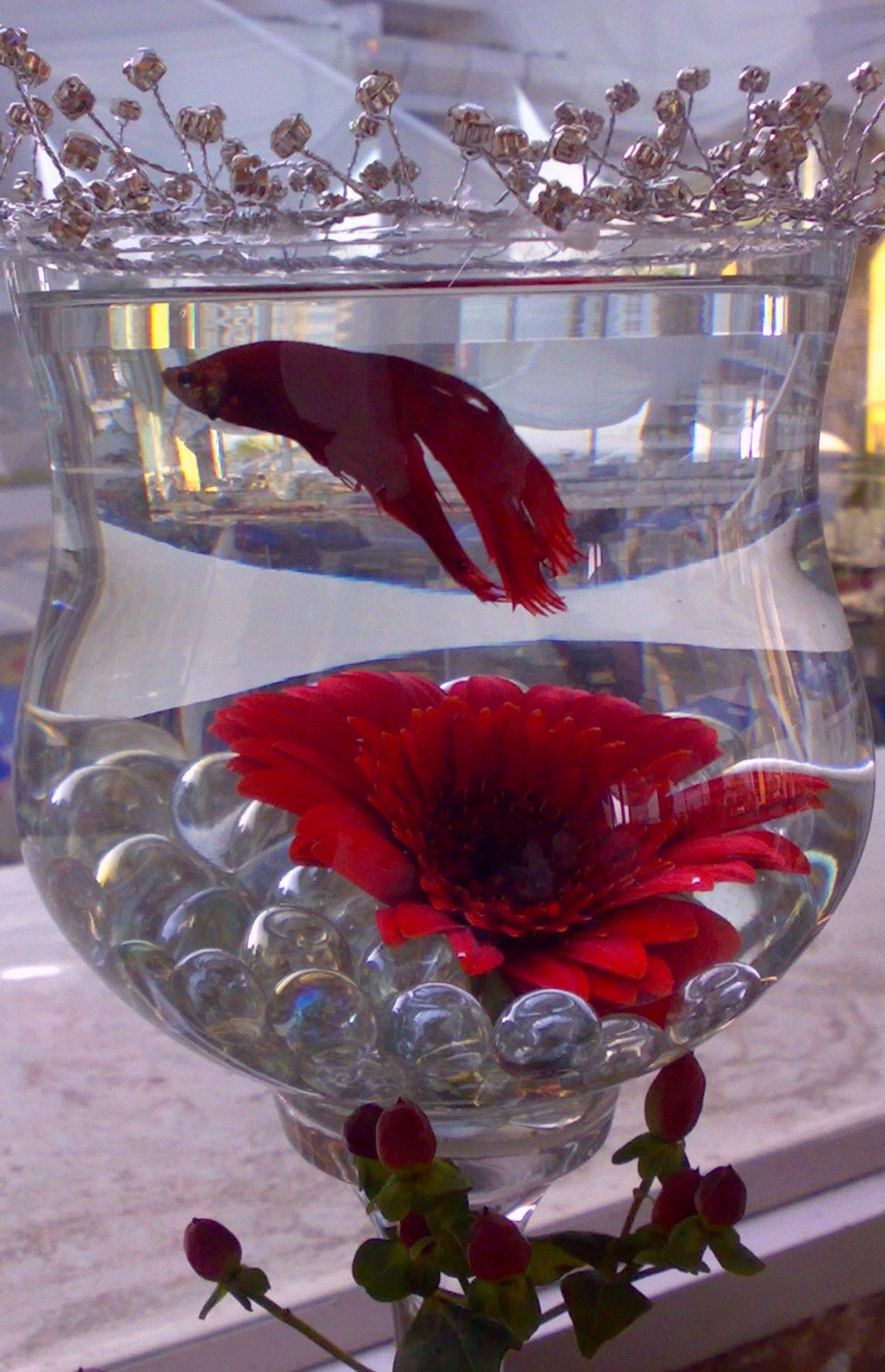 For Those Brides Who Want A Totally Different Touch Siamese Fighting Fish In A Large Wine Vase Wi Fish Centerpiece Wedding Centerpieces Beta Fish Centerpiece